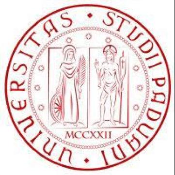 University of Padua Excellence Scholarship